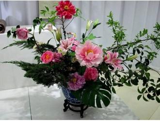 切花采后处理~保持切花品质的关键