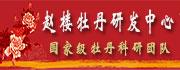 菏泽市赵楼社区牡丹研发中心